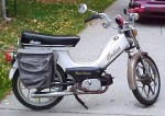 """1981 Indian AMI50 white with gold script silver Mira """"snowflakes"""""""