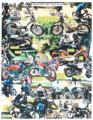 Ride 25 B