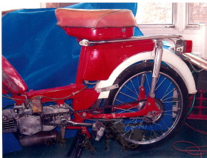 Chinese Sachs GD