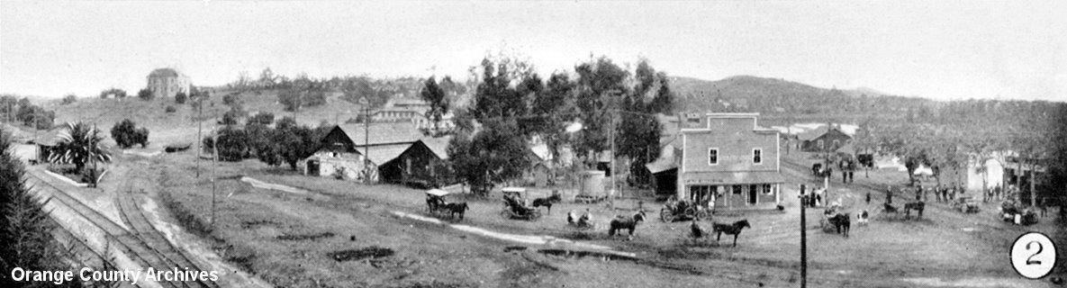 Olive in about 1880